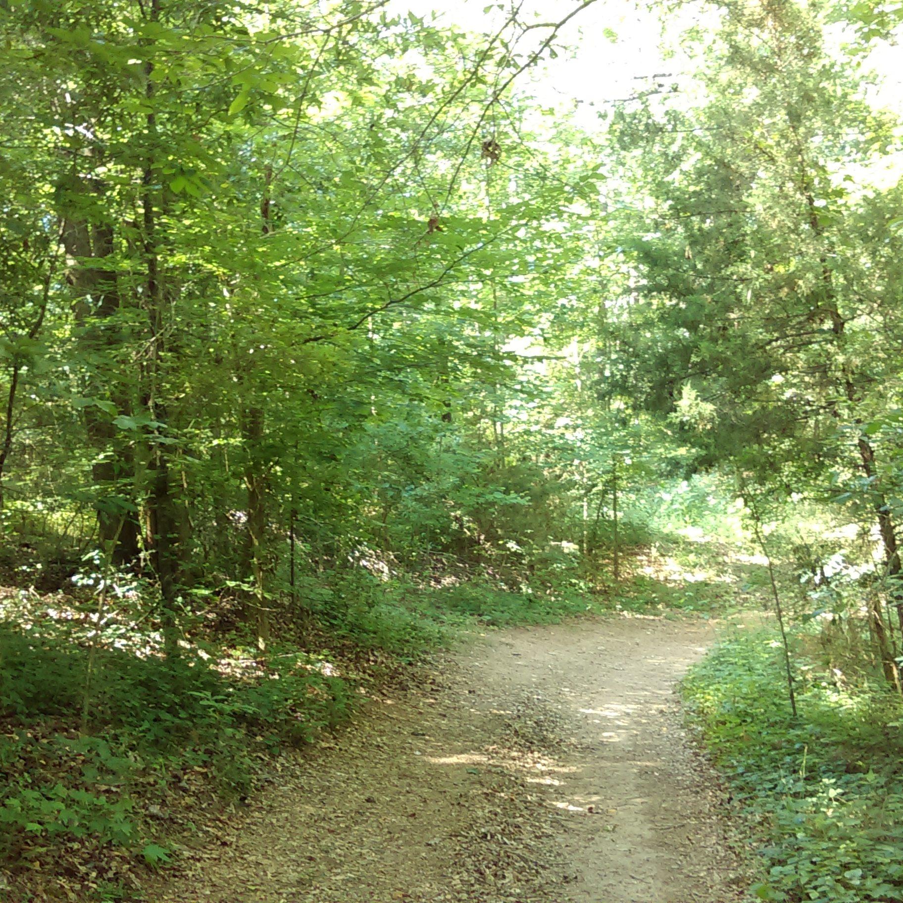 4.5 miles walking trails